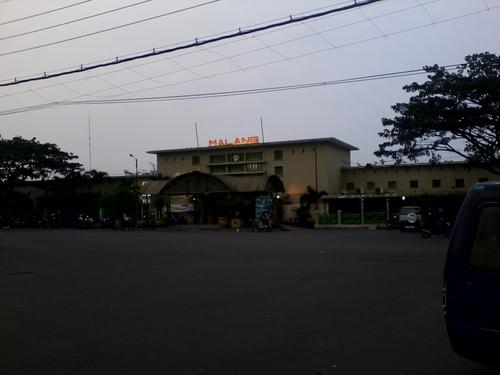 Nyamuk-Nyamuk di Depan Stasiun Kota Baru Malang