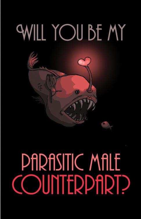 Pathetic male anglerfish